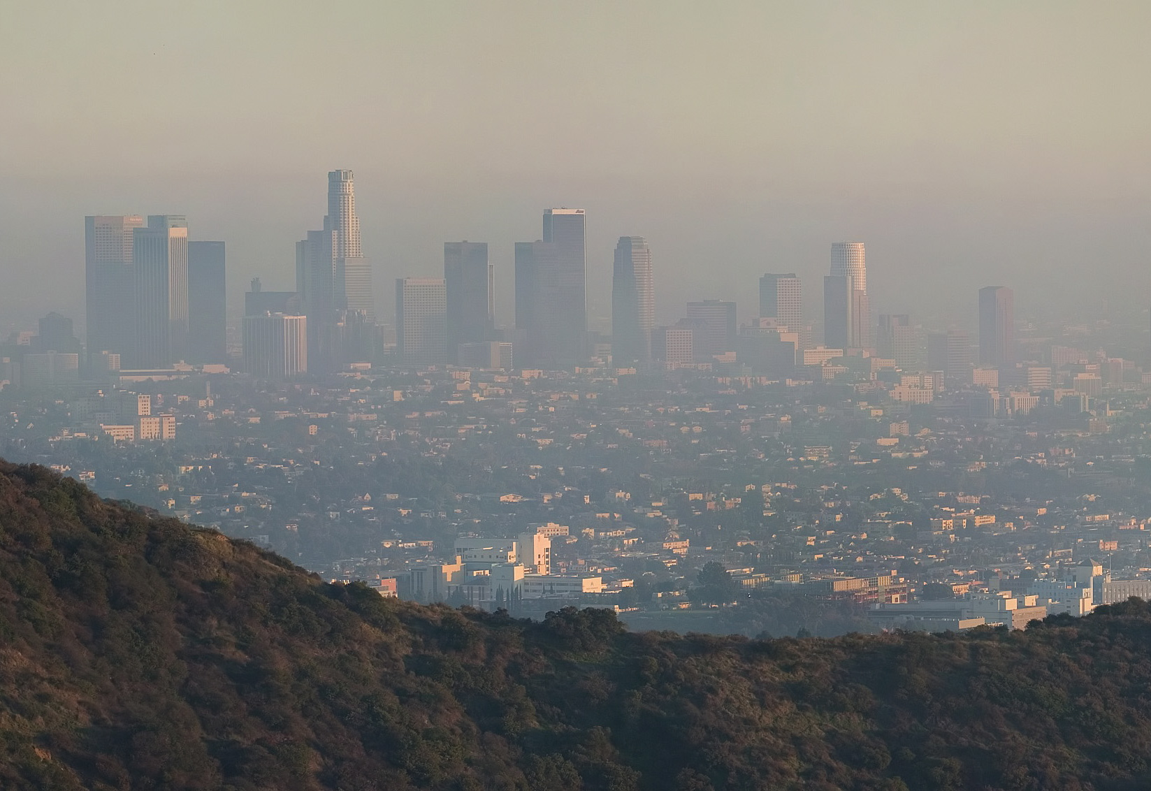 California's Air Pollution Causes Asthma, Allergies and Premature Births